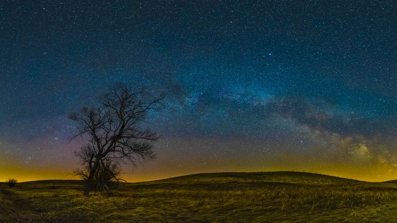 The lonely tree and milky way