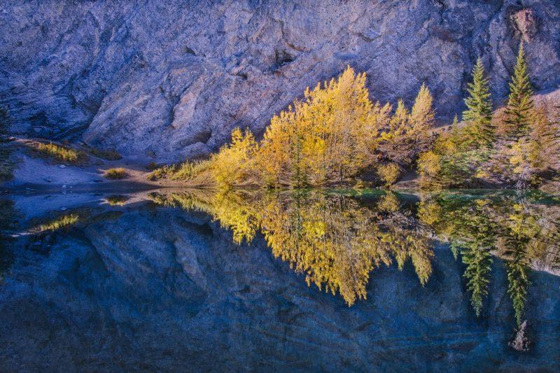 Grassi Lake Reflections