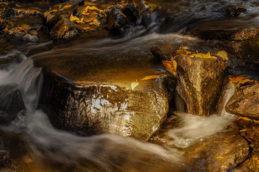 "3rd Place, ""Golden Stream"" by Khang Nguyen"